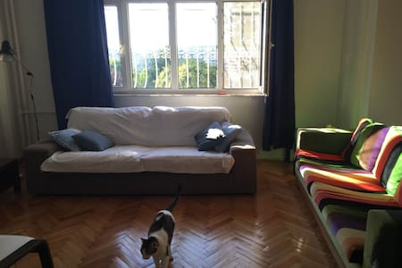 Green area, cosy&quiet w/2 cats, short/long term - Şişli
