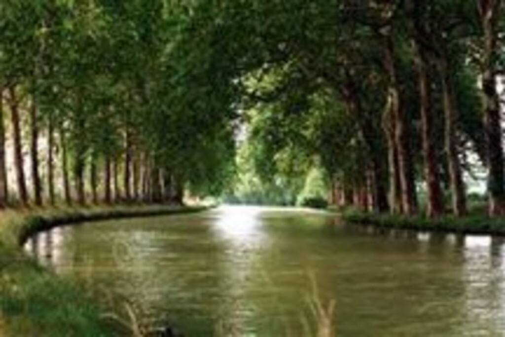 Canal du MIDI promenades à 5 kms