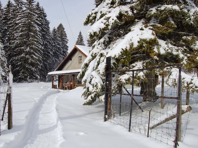 Au coeur des Franches-Montagnes - Le Noirmont - Dům