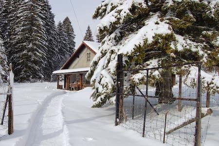 Au coeur des Franches-Montagnes - Le Noirmont - Huis