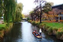 1 min walk to the Avon river.