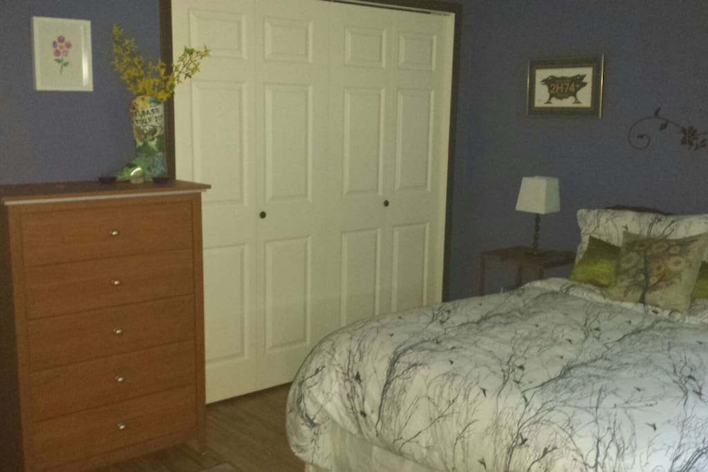 Double closet and5 drawer dresser for your clothing.
