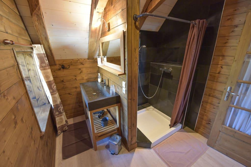 Salle de bains avec grande douche