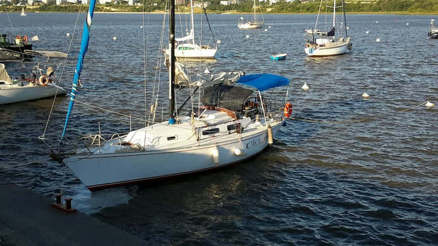 Velero en Puerto de Yates Colonia