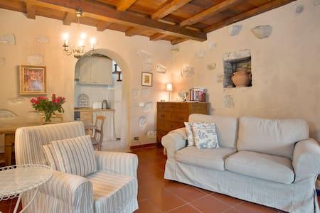 Borgo della Madonnina, La Stalla - 卢卡 - 独立屋