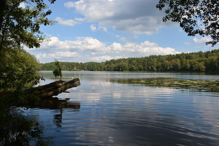 Naturoase Großer Zermittensee