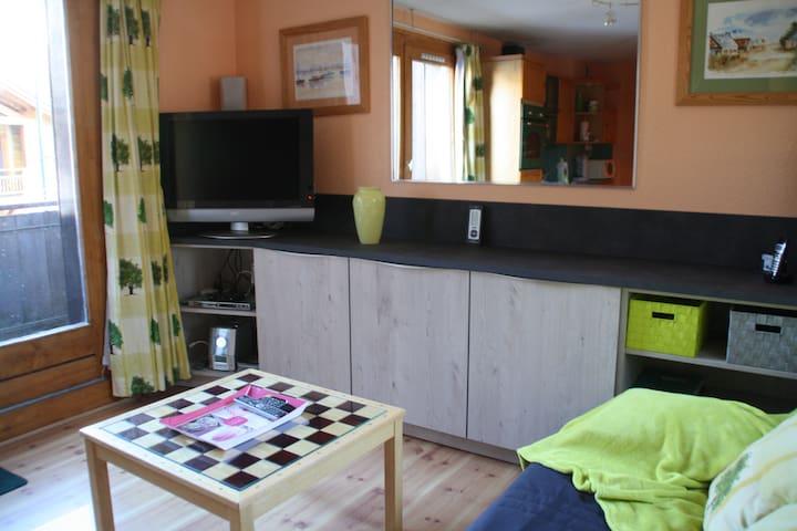 Duplex 40 m2 au pied des pistes - PRAZ DE LYS - Apartment