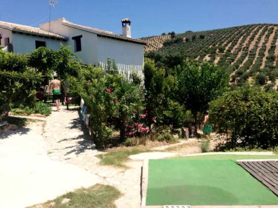 Piscina climatizada jacuzzi wi ff houses for rent in for Piscina climatizada granada