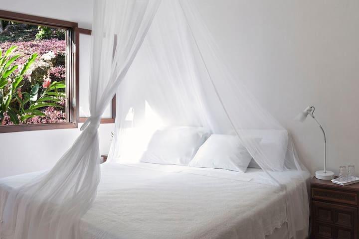 Cabana Suite 1