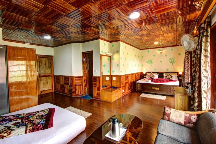 Manali Holiday Villa 2