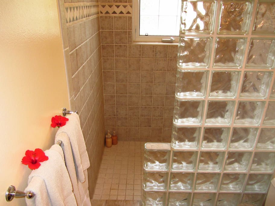 Walk in glass block shower with window to tropical gardens