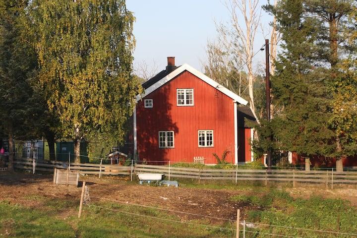 Close to Hellerudsletta/Lillestrøm