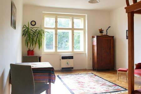 Sunny apartment near centre Prague - Prague - Apartment