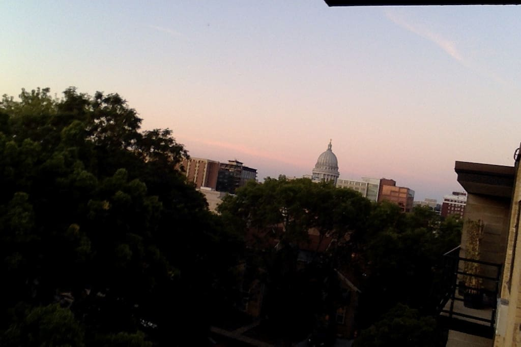 View of Capitol