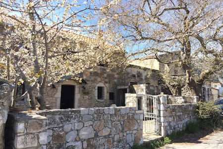 Villa Manousos - Ασκύφου - Ház