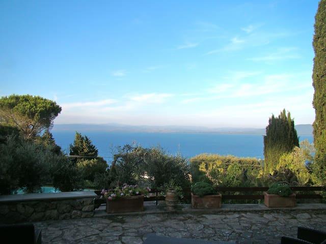 Villa Mariella among olive trees