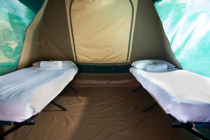 Mini prêt-à-camper de luxe sur Cockatoo Island
