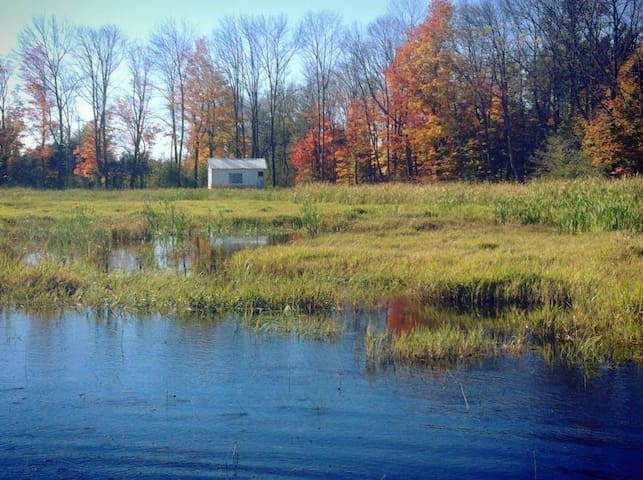 Little Cabin on the Marsh - Kawartha Lakes - Lainnya