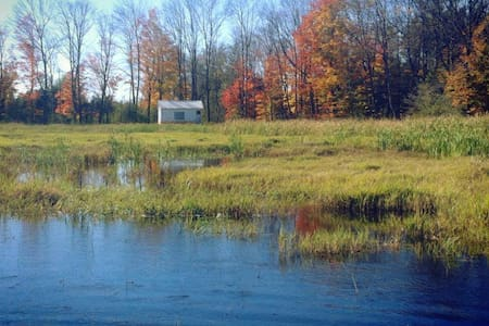 Little Cabin on the Marsh - Kawartha Lakes - Andere
