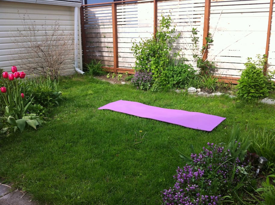 Beautiful private backyard is available to relax, read, eat, BBQ, do yoga in, from spring to fall