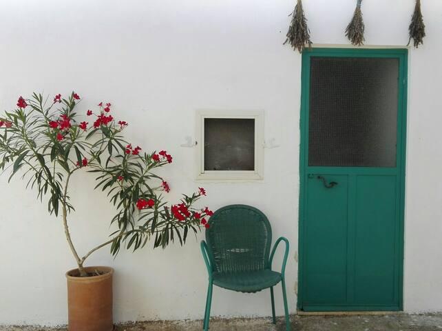 10KM dal MARE_Casetta fra gli ulivi - Martano - House