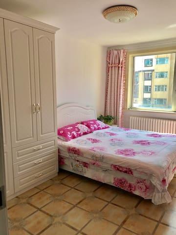 美丽精装2居室 - li - Huis