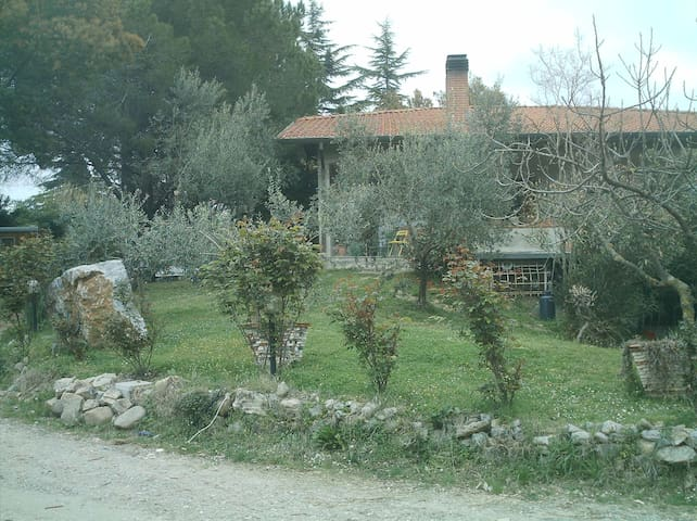 alloggio immerso nel verde,eucalipt,seminterrato - ซาร์ซานา - บ้าน