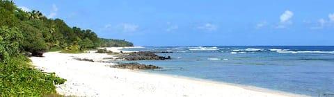 Welcome to Alofa Beach Bungalows!