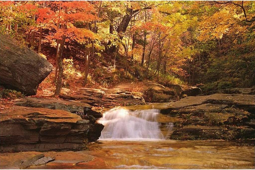Catskill fall foliage