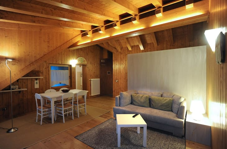 Ravascletto attic on site ski - Ravascletto - Apartament