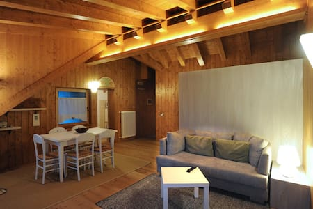 Ravascletto attic on site ski - Ravascletto - Huoneisto