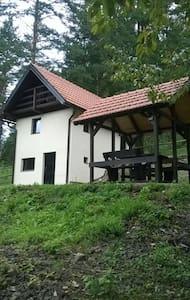 Forest house near Plitvice Lakes - Lička Jesenica