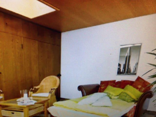 Bedroom with own Bathroom - Dresde - Bed & Breakfast