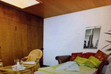 Bedroom with own Bathroom - Dresden - Bed & Breakfast