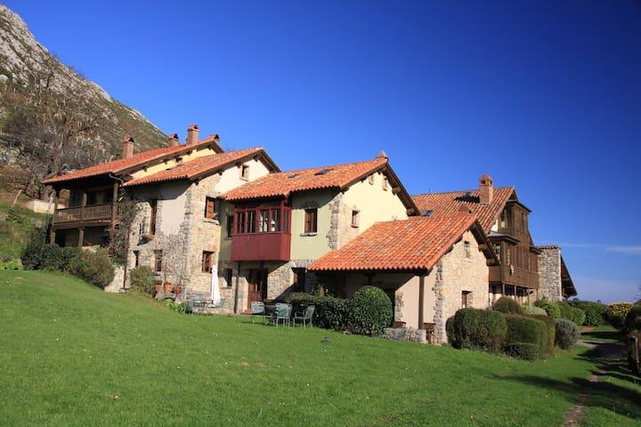 Habitación individual La Montaña Mágica