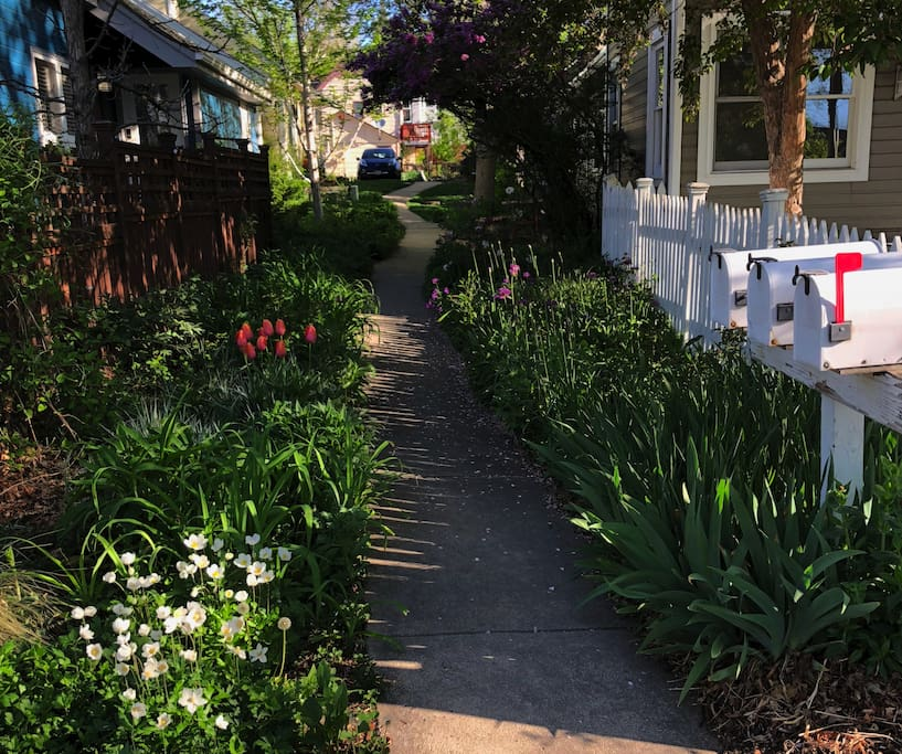From Mapleton Avenue: a view of the sidewalk that leads to the house.