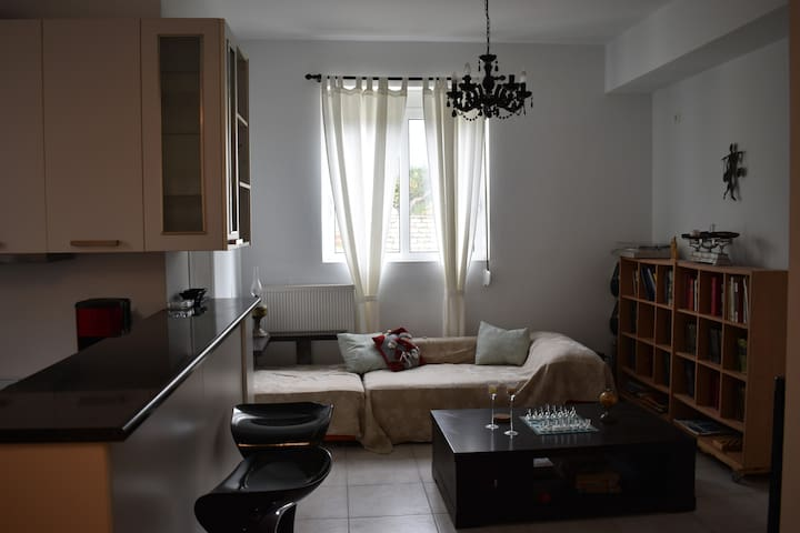 Comfortable apartment in the countryside