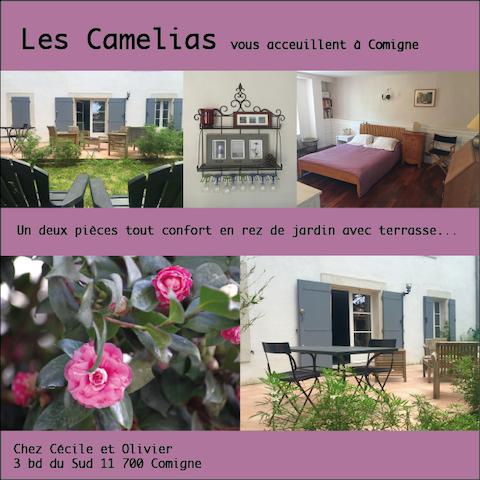 Appartement d'hôte: les Camélias - Comigne - Apartment