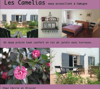 Appartement d'hôte: les Camélias - Comigne