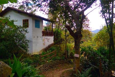 Hummingbird Suite - Eco-lodge / Retreat Vilcabamba