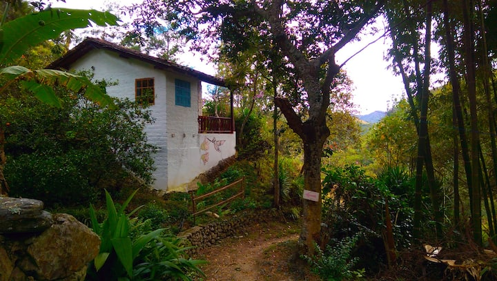 Hummingbird Suite - Eco-lodge / Retreat Vilcabamba