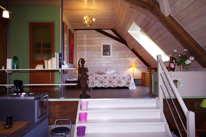 La Maison de Martine- Studio - Desingy - Appartement