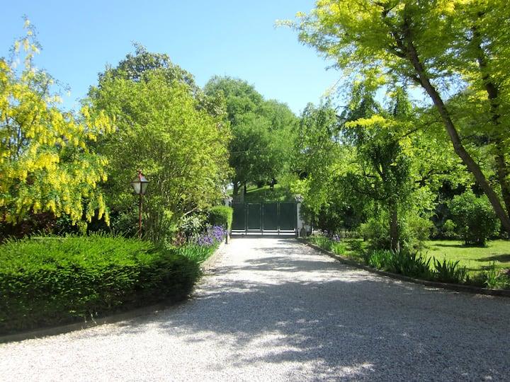 Villa Petrarca 1 -Relax,swim, eat, explore,repeat!