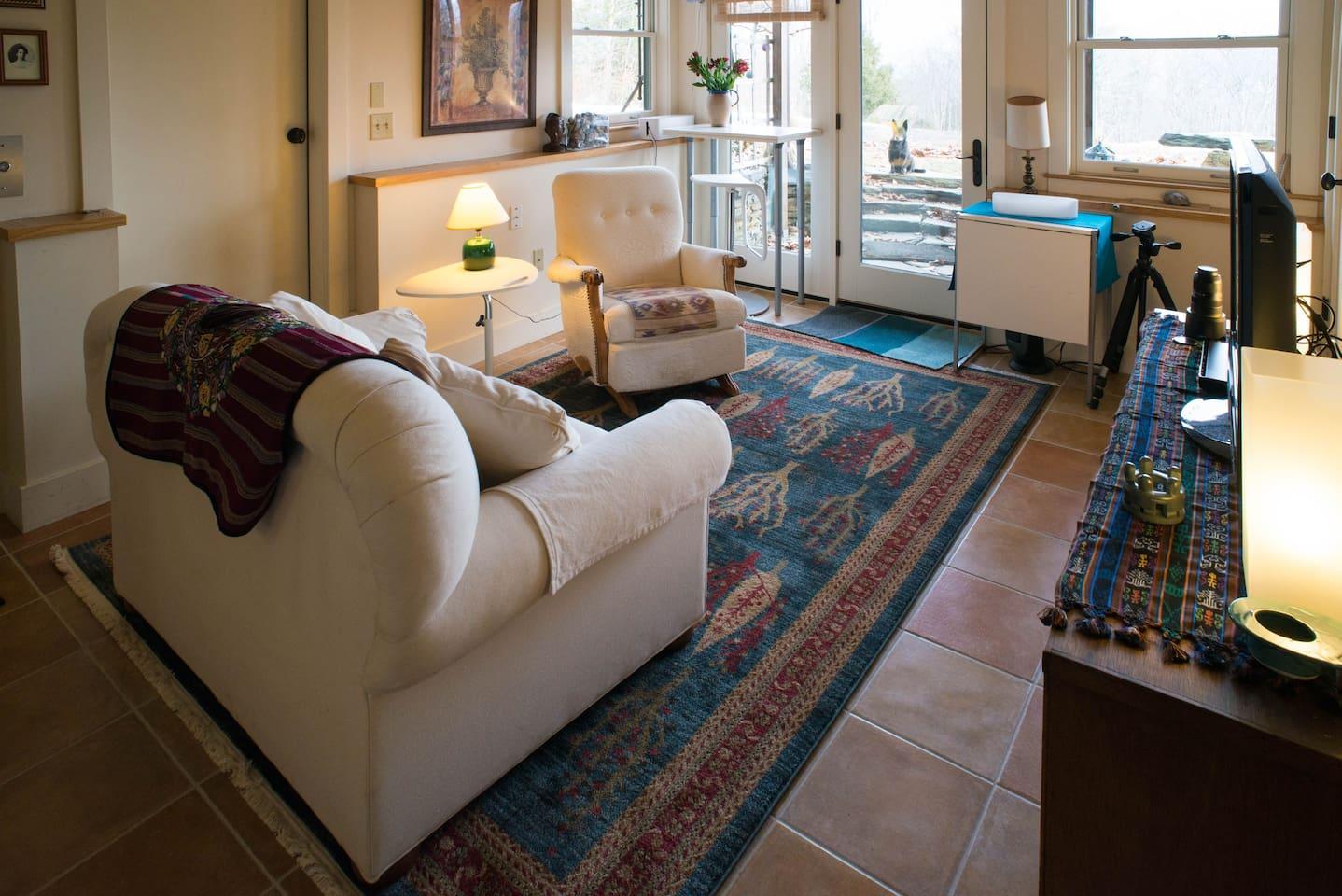 Living room with laptop desk in far left corner. Glass door to garden up stone steps.
