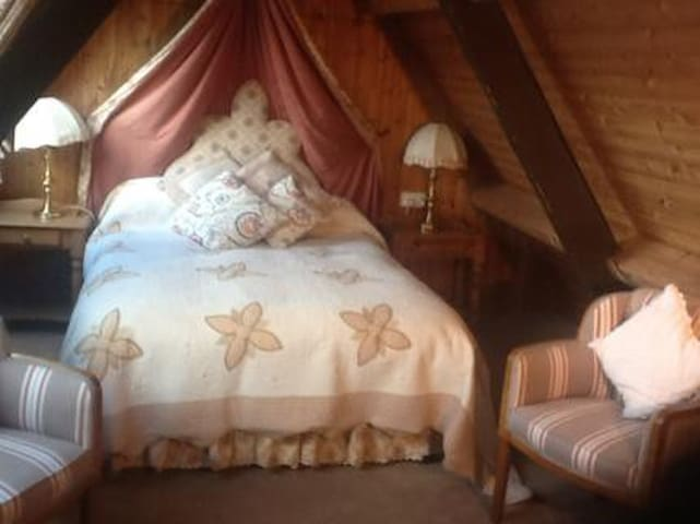 Double room under the eaves with private shower/WC - Brougham - Bed & Breakfast