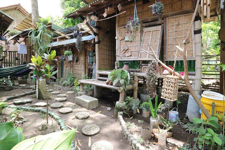 FILISTAY Eco Homestay