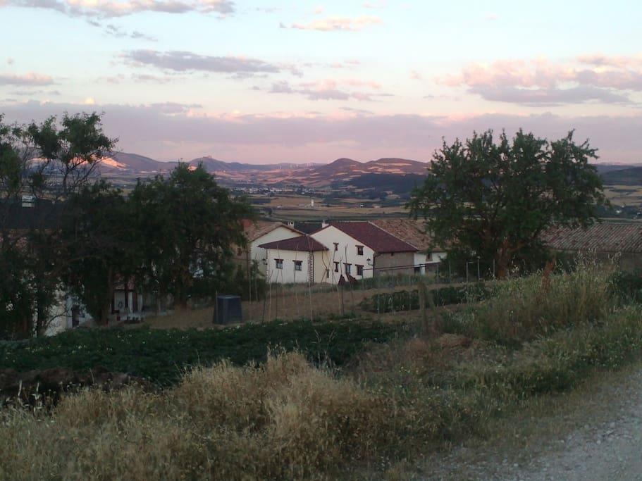 pueblo bien situado en zona media de navarra junto al camino de santiago