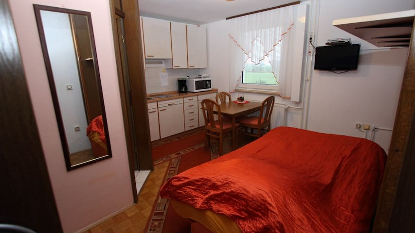 Apartment for 2 to 4 person - Cerklje na Gorenjskem - Appartement