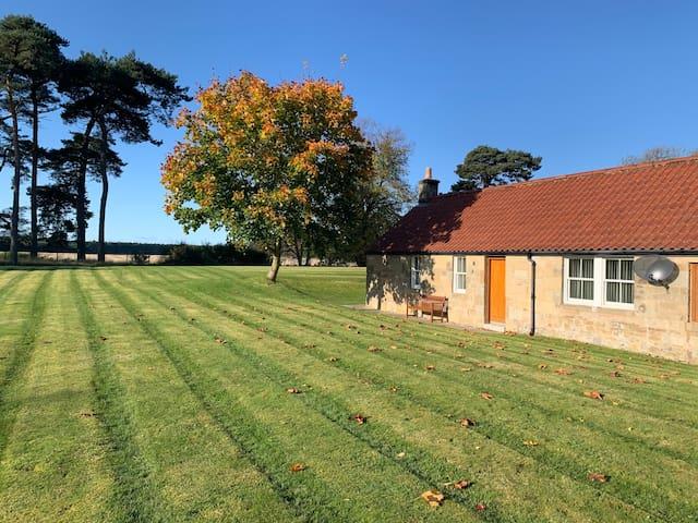 Beautiful cottage near Ladybank, Cupar, St Andrews