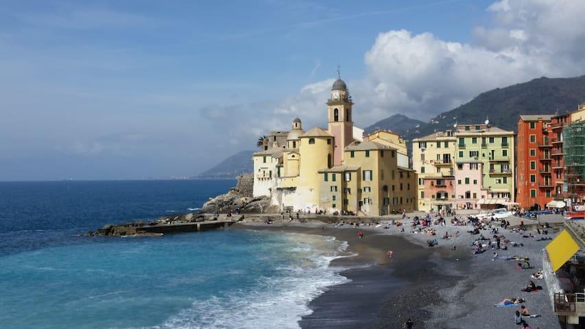 Camogli: Passeggiata mare - Camogli - Wohnung